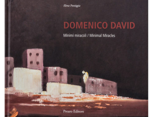 DOMENICO DAVID – Minimi miracoli